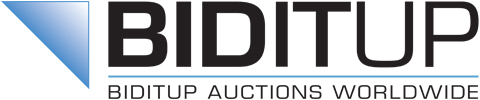BidItUp Industrial Auctions